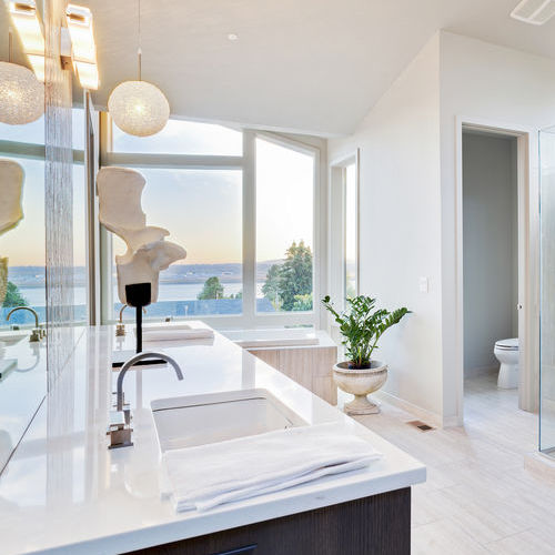 A white bathroom with a plant in the foreground overlooks a river front.