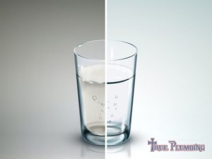 Untreated and Treated Water